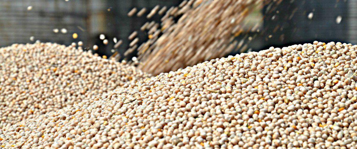 Ссылка на: Оборудование для зерновых