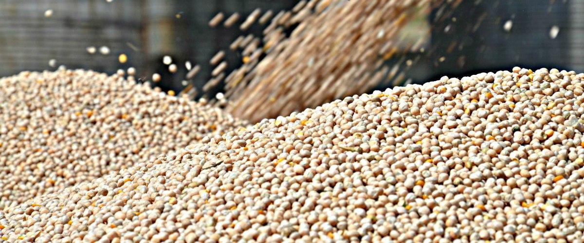 Оборудование для зерновых