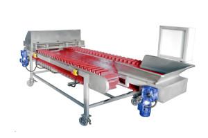 Инспекционный стол для овощей ИС-4300