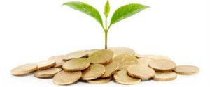 Купить оборудование для пищевой промышленности: 4 актуальных бизнес-идеи